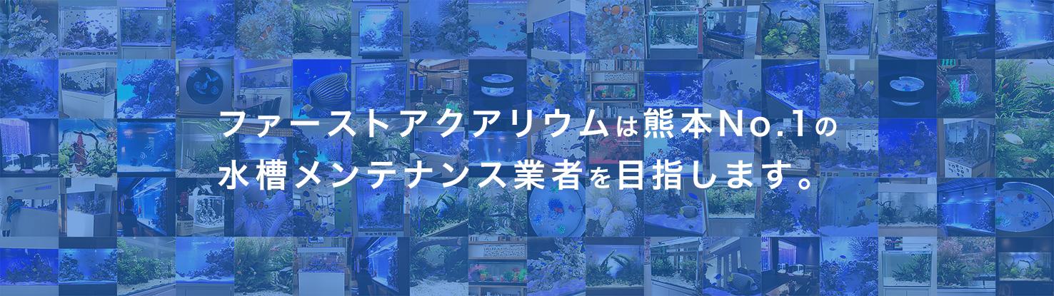 ファーストアクアリウムは熊本No.1の 水槽メンテナンス業者を目指します。